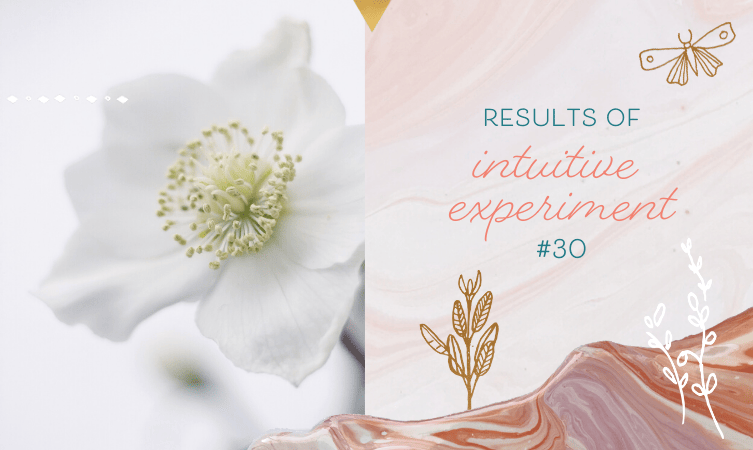 Results of Intuitive Experiment #30