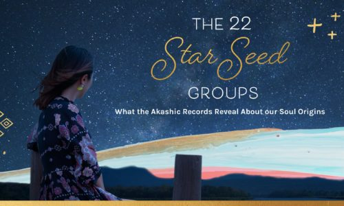Which star seed group do you belong to?